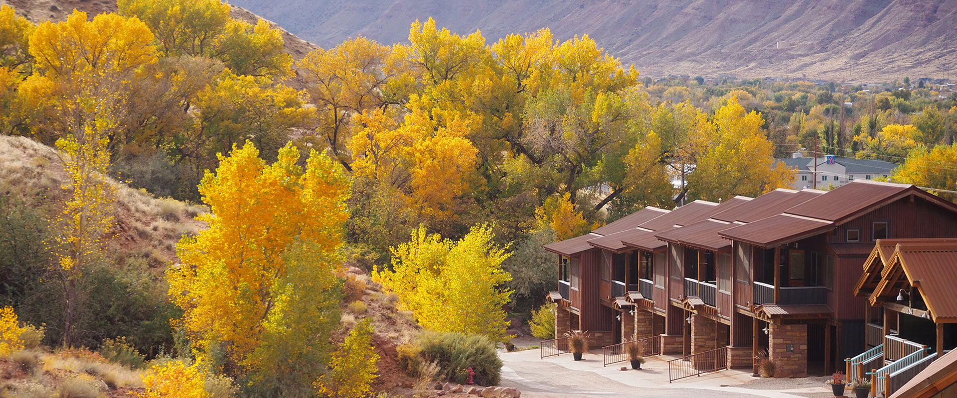 Barren brown tree branches droop over a pond with its' banks covered with a light sprinkle of snow at Moab Spring Ranch in winter.