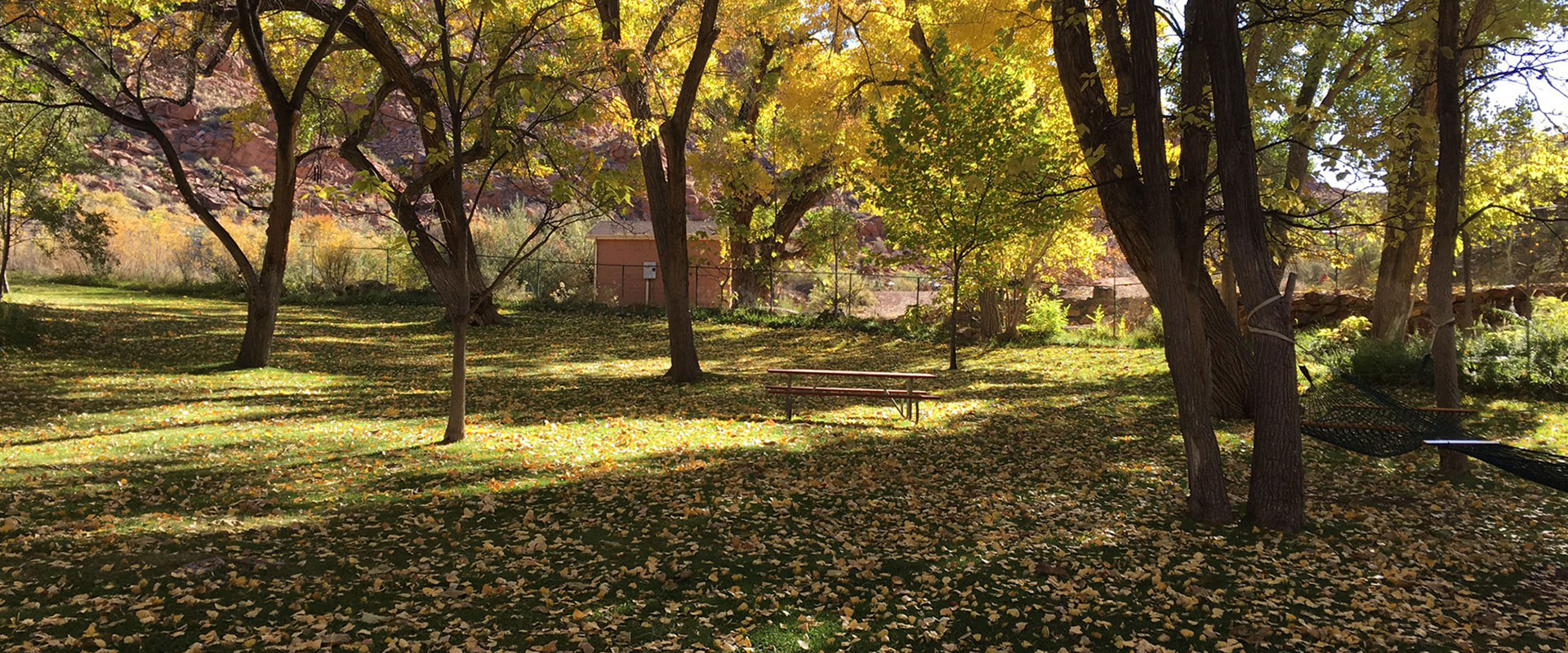 The National Historic Register House on the Moab Springs Ranch property is a two storey brick building surrounded by towering vibrant cottonwood trees.